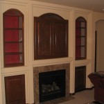 Built in TV Case and Book Cases with Shelves